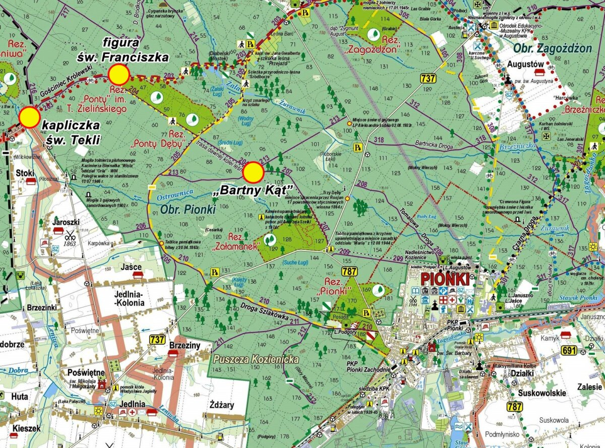 Mapa_II_Pionkowski_Dzień_Pszczoły
